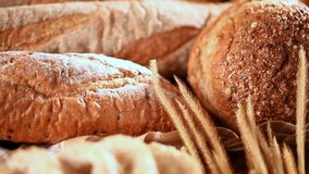 Brood en gehele tarwe stock videobeelden