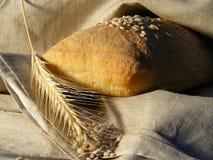 Brood en graangewassen die op het weefsel liggen Royalty-vrije Stock Afbeelding