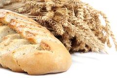 Brood en tarweoren op witte achtergrond Stock Afbeeldingen