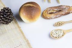 Brood en zaad op lepel Stock Afbeelding