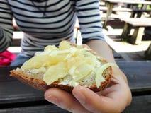 Brood met ingelegde kaas Royalty-vrije Stock Foto's