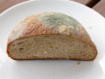 Brood met vorm Royalty-vrije Stock Afbeelding