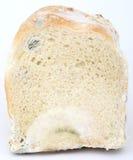 Brood van beschimmeld bruin brood Stock Foto