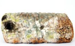 Brood van beschimmeld bruin brood royalty-vrije stock afbeeldingen