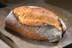 Brood van brood Royalty-vrije Stock Foto's