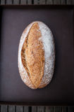 Broodbrood Royalty-vrije Stock Foto's