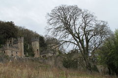 Brooding castle in woods Stock Image