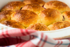 Broodjes met zoet gistdeeg dat worden gemaakt Stock Foto's