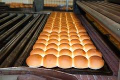 Broodjes van brood in de fabriek Royalty-vrije Stock Afbeeldingen