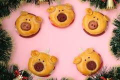 Broodjes 'Varkens voor het Nieuwjaar 2019 Eigengemaakt baksel stock fotografie