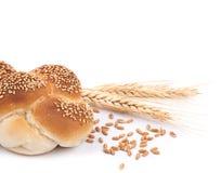 Broodjesbrood & Tarwe Royalty-vrije Stock Fotografie