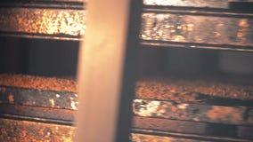 Broodproductie bij de bakkerij, vers gebakken brood stock videobeelden
