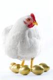 broody курица Стоковая Фотография