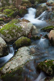Brook and big rocks with moss Stock Photos
