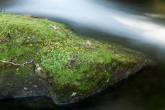 Brook and big rocks with moss Stock Photo
