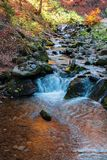 Brook with cascade in beech forest royalty free stock photography