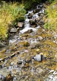 Brook. Clear stream flows through rocks in a beautiful natural ambience Royalty Free Stock Images