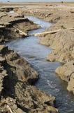 Brook on drying dam Royalty Free Stock Photos