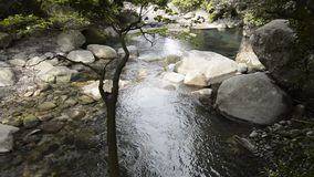 Brook flowing among rocks. Gently brook flowing among rocks to downstream stock footage