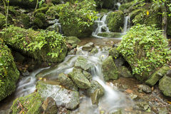 Brook flowing. Small brook flowing among the mossy stones Stock Photo