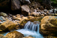 Brook of forest. A small river water fall Stock Images