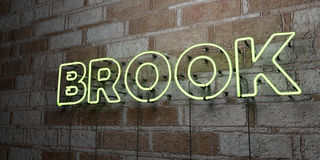 BROOK - Glowing Neon Sign on stonework wall - 3D rendered royalty free stock illustration. Can be used for online banner ads and direct mailers Royalty Free Stock Photos