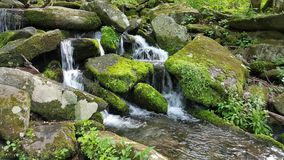 Brook and Moss Covered Rocks Royalty Free Stock Photos