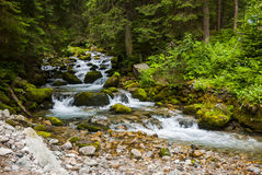 Brook. In the mountains Royalty Free Stock Photography