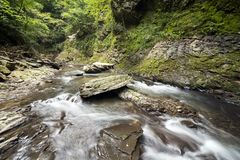 Brook on rock mass. Shallow brook flowing on rock mass in front of green forest Stock Image