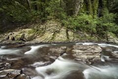 Brook on rock mass. Shallow brook flowing on rock mass in Kumamoto Stock Photography