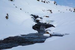 Brook in the snow in the highlands of Iceland stock photo
