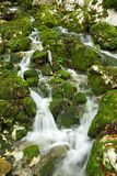 Creek in the Mehedinti mountains Royalty Free Stock Photos