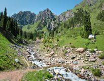 Brook stream water nature summer mountains  Central Asia Stock Photo