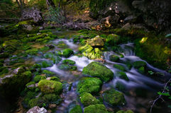 Brook at sunset. Landscape of a rocky brook at sunset with moving water on long exposure Royalty Free Stock Photography