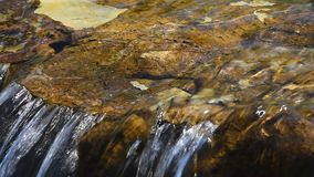Brook water stream with small rift. Brook clear transparent water stream with small rift stones in day time stock video footage