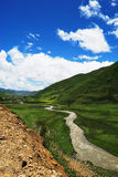 Brook in Western Sichuan Plateau Royalty Free Stock Image