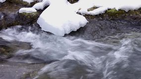 Brook In Winter stock video