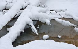 Brook in winter Royalty Free Stock Photo