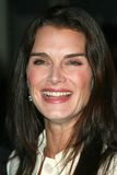 Brooke Shields Royalty Free Stock Image