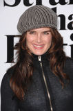 Brooke Shields Stock Image