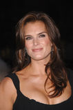 Brooke Shields Royalty Free Stock Photography