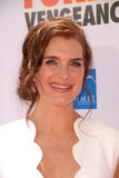 Brooke Shields Royalty Free Stock Photo
