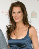 Brooke Shields Stock Images