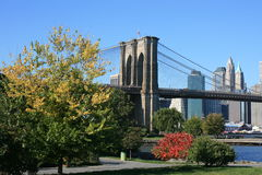 Brooklyn Royalty Free Stock Images