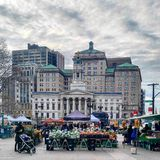 Brooklyn Borough Hall royalty free stock photography