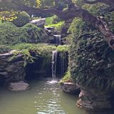 Brooklyn botanisk trädgård Royaltyfria Bilder