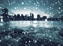 brooklyn bridżowa linia horyzontu Manhattan obrazy stock