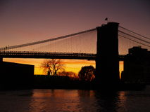 Brooklyn bridge. In the sunset Royalty Free Stock Images