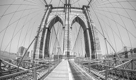 Brooklyn Bridge in fisheye lens. Stock Image