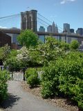 Brooklyn Bridge Park New York USA. Brooklyn Bridge Park view of Manhattan skyline royalty free stock image